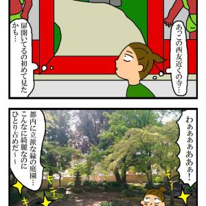 人の少ない高円寺を散歩してしょんぼりしてたら誕生日祝うことになった