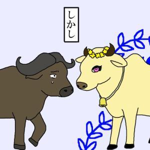 牛を神聖視するヒンドゥー圏のステーキに気をつけろ