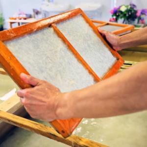食べ物かと思った? 美濃和紙の制作工程を見た外国人の反応