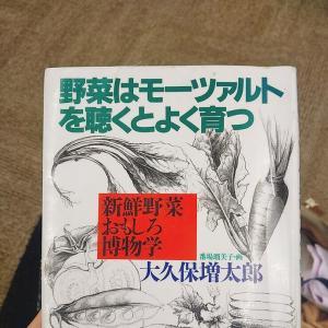野菜はモーツァルトを聴くとよく育つ/大久保 増太郎