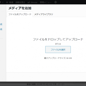 mixhostで動画がアップロードできない場合