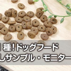 【全31種】ドッグフードのお試しサンプル・モニター情報一覧|無料・有料別まとめ
