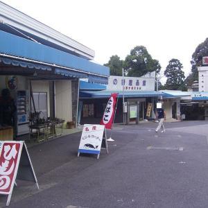(三重県)鬼ヶ城水族館