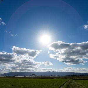 太陽は人生の目的を表します✨
