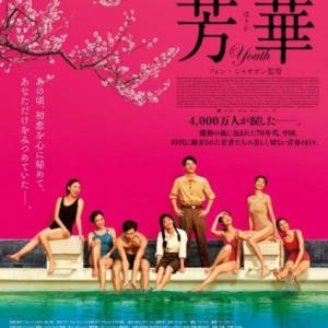 おすすめの中国映画【芳華-Youth-】