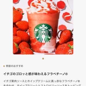念願のスタバでイチゴを堪能しました〜!
