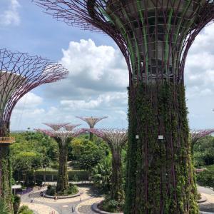シンガポールのサーキッドブレーカー6月まで延長へ