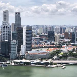 シンガポール生活:冷蔵庫の壁に氷が出現