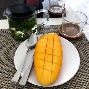 日本人がタイで作った奇跡のマンゴーにシンガポールで出会った