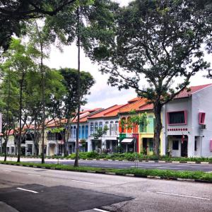 シンガポールで罰金を払った話:ゼブラコントールエリアに注意