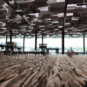 ガラガラな世界1位の空港:シンガポールチャンギの静寂