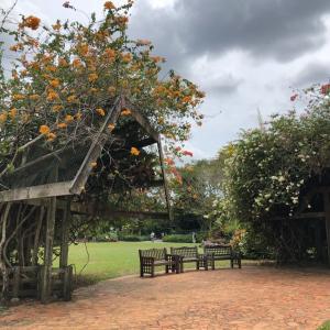シンガポール生活9ヶ月:海外で生活すると変わること