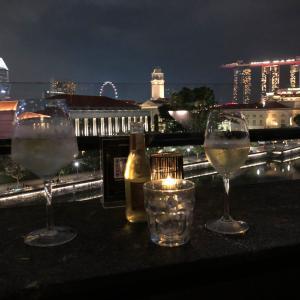 シンガポールでルーフトップバーへ行ってみたら眺めが良かった話