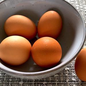 今まで食べた中で最上級レベルに美味しい卵を発見!