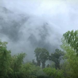 夏の始まりのWの悲劇:壊れたエアコンの運命