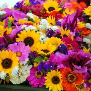 お花の水揚げについてお花屋さんがいろいろ考えてみました!