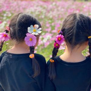 お花屋さんがおすすめ。9月に飾りたいお花たち。