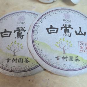 茶の記録 HOJO 白鶯山古樹生茶2015年
