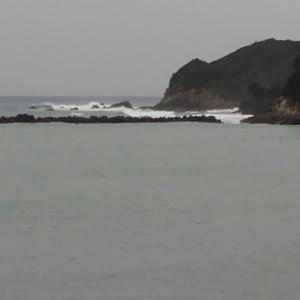 海の状況と釣果アルバム