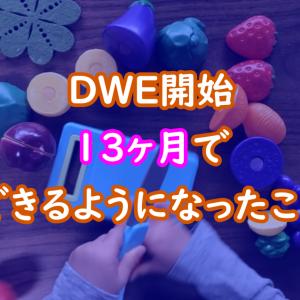 【2歳近況】DWE開始13ヶ月!おままごとのセリフが英語に!