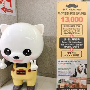 韓国で13,000wの癒し ミスターヒーリング