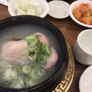 参鶏湯を食べる日