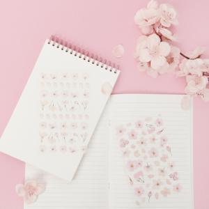 今年もこの季節が来た!韓国ダイソーの桜シリーズご紹介②