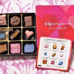 幸福のチョコレート講座・試食チョコセット(9粒入り)〈定番コース〉