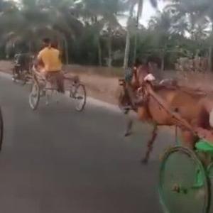 インドの馬のレースは、馬よりバイクの方が多い!!
