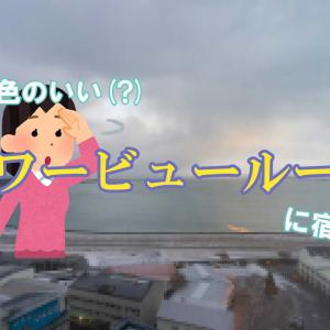 【レビュー】アイスランドの景色を一望できる(!?)ホテルに泊まったよ