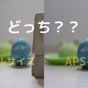 【初心者向け】結局フルサイズかAPS-C、どっちのカメラがいいの?