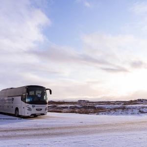 冬のアイスランドでゴールデンサークルツアーに参加した【ルートや料金など】