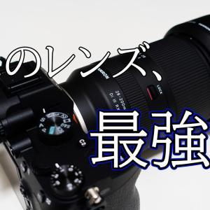 【使用レビュー】タムロンの28-200mm F2.8-5.6はなんでも撮れる優等生