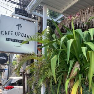 【ナチュラル】定番ヘルシーカフェ CAFE ORGANIC