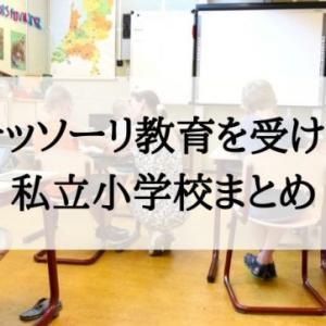 モンテッソーリ教育を実施する私立小学校のまとめ