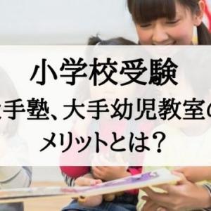 【小学校受験】大手塾、大手幼児教室に通うメリットとは?