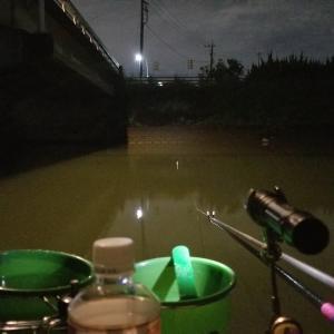 へらぶな 坂川放水路ナイター 9月25・26・27日