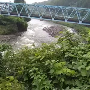 【郡上6回目】雨から濁水の郡上で釣る!?