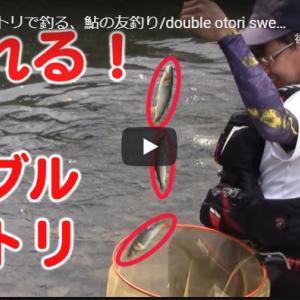 2匹のオトリで釣る?!でも釣れるんです(^_-)-☆