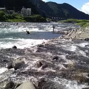 【郡上20回目】台風10号の前に行っとかなくっちゃ!