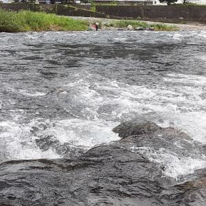 【郡上23回目】小雨の郡上は身体も釣果も寒い(>_