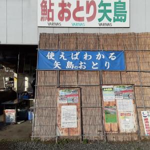 この時期(終盤)の郡上釣行は矢島おとり店で決まり!?