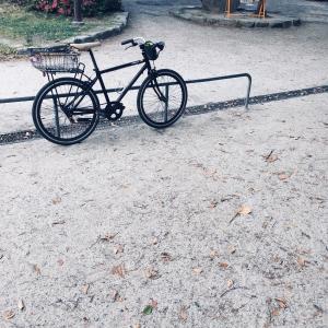 早朝の自転車散歩