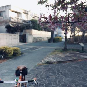 朝の自転車散歩