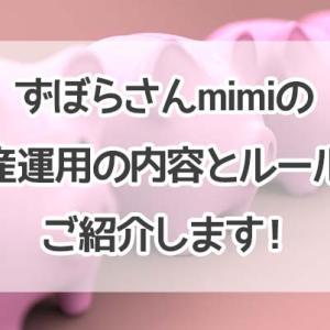 【2020年版】ずぼらさんmimiの資産運用の内容とルールをご紹介します!