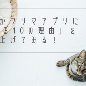 【雑記】「私がフリマアプリにハマる10の理由」を上げてみる!