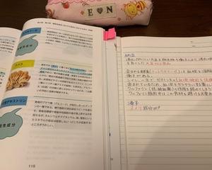 人生日々勉強〜24日 寝るまでの時間〜 <試験まであと28日>