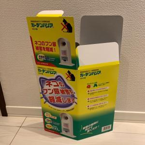 本当泣きたくなる17,598円の出費( ᵕ̩̩ㅅᵕ̩̩ )