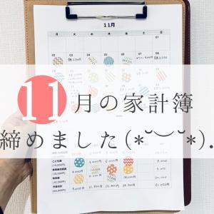悔しくて泣きそうな11月の家計簿( ᵕ̩̩ㅅᵕ̩̩ )