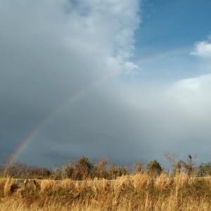 雨と晴れの境界線